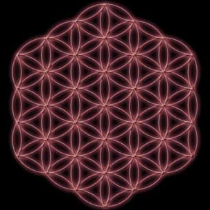 Flower Of Life (hollow)